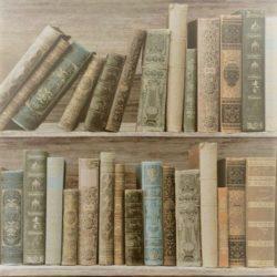 Librerie e scaffali antichi